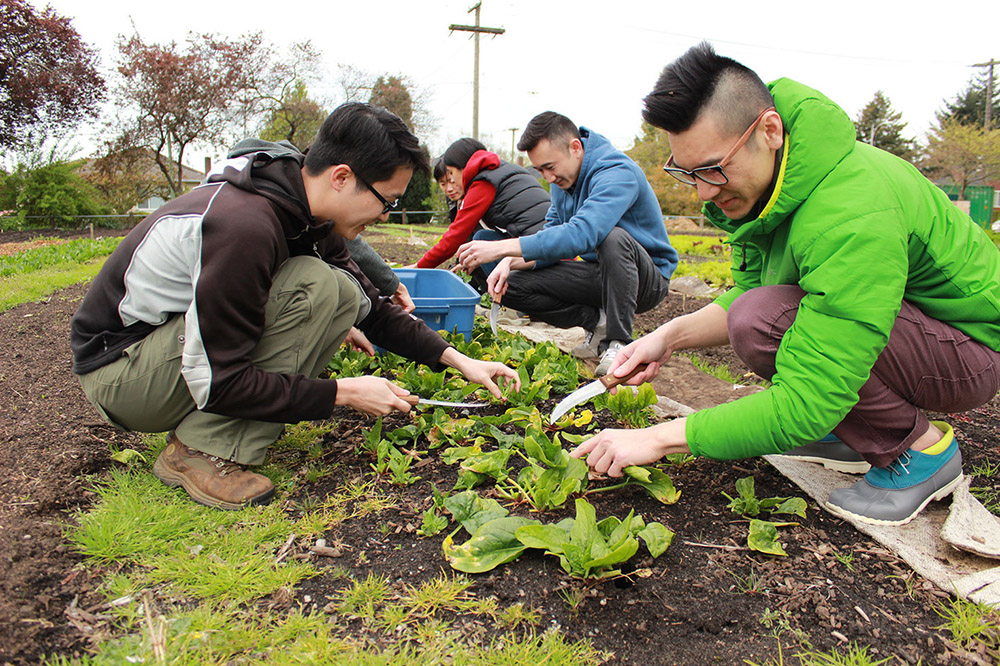 Community members helping plant vegetables