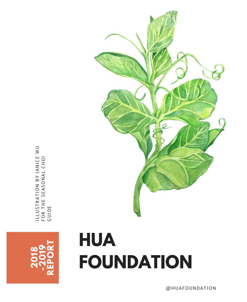 Hua foundation 2018-2019 report